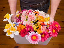 Flower Box Stock Images