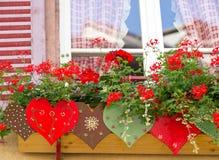 Flower box outside window Royalty Free Stock Photo