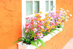 Flower box in window Royalty Free Stock Photo