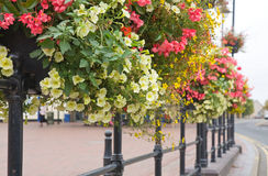 Flower boxes Royalty Free Stock Photos
