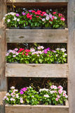 Flower Boxes Stock Photography