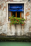 Flower box, Venice, Italy Stock Images