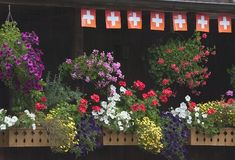 Flower boxes on Swiss balcony royalty free stock images