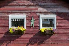 Flower Boxes on Windows Stock Image