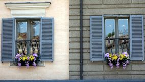 Flower Boxes in Windows, Rome Royalty Free Stock Image