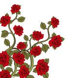 Flower branch roses, bouquet of flowers. Ornament with red roses.  Royalty Free Stock Photos