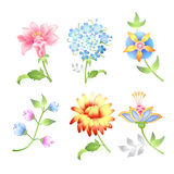 Flower branches set. On white background (vector illustration Stock Photos