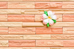 Flower on a brick wall Royalty Free Stock Image
