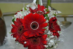 Flower. Bridal bouquet flower red love Royalty Free Stock Photos