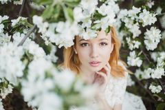 Flower, Bride, Photograph, Woman Stock Photos