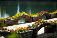 Flower bridge Stock Images