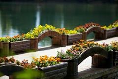 Flower Bridge Stock Images