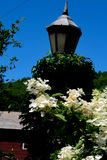 Light on Flower Bridge decoated with White Flowers. The Flower Bridge sits under a deep blue sky on a hot.hunid summer day.. Gothic sstye lamps line the bridge Royalty Free Stock Photo