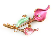 Flower Brooch Stock Image