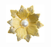 Flower brooches Royalty Free Stock Photography