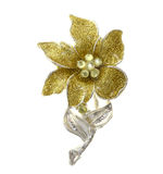 Flower brooches Royalty Free Stock Images