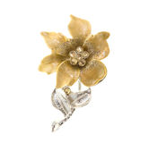 Flower brooches Royalty Free Stock Photo