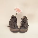 Flower and brown boots Stock Image