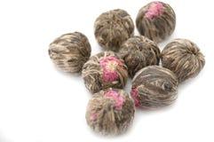 Flower Bud Tea Stock Photography