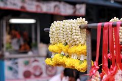 Flower for the buddha. Flower jasmin for the buddha  with religion Royalty Free Stock Photo