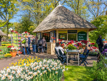 Flower bulb shop in Keukenhof Gardens, Holland Royalty Free Stock Photos