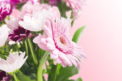 Flower bunch with gerberas on pink background Royalty Free Stock Images