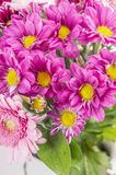 Flower bunch with pink chrysanthemum Stock Photos
