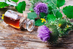 Flower and burdock extract Royalty Free Stock Photography