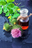 Flower and burdock extract Royalty Free Stock Image