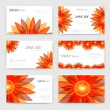 Flower business cards set Royalty Free Stock Photography