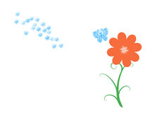 Flower and butterflies. Illustration of blue butterflies and orange flower over white background. Useful for greeting cards, postcards in theme with the summer Stock Images