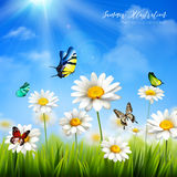 Flower With Butterfly Background Royalty Free Stock Photo