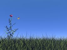 Flower and butterfly - 3D render. One flower standing out of the grass, butterfly flying around and blue sky Royalty Free Stock Image