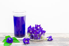 Flower butterfly pea juice in glass with fresh flowers and green leaves on vintage wooden table on white background Stock Image