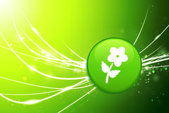 Flower Button on Green Abstract Light Background Stock Photos