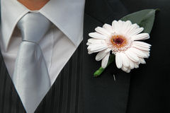 Flower buttonhole Royalty Free Stock Images