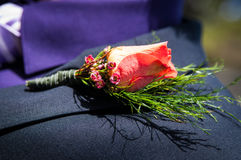 Flower buttonhole Stock Images