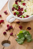 Flower cabbage salad with parsley and cranberry in big cup Royalty Free Stock Photos