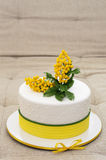 Flower cake. White cake with sugar mimosa covered with mastic royalty free stock images