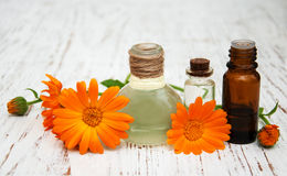 Flower of calendula officinalis and oils Royalty Free Stock Photo