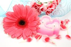 Flower and candle royalty free stock photos