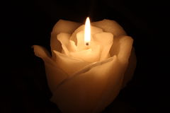 Flower candle Stock Photo