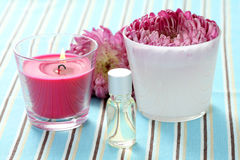 Flower and candle Royalty Free Stock Images