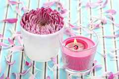 Flower and candle Stock Photos