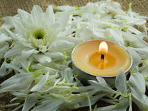 Flower and candle. Concept spa Royalty Free Stock Images