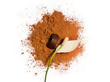 Flower and candy on a cocoa powder Royalty Free Stock Photo
