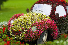 Flower-car. A car made of flowers on the medow Stock Photos