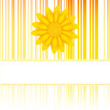 Flower card. With space for your text Royalty Free Stock Photo