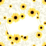 Flower card. Vector background with flowers and place for text Royalty Free Stock Photography