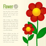 Flower card Royalty Free Stock Photography
